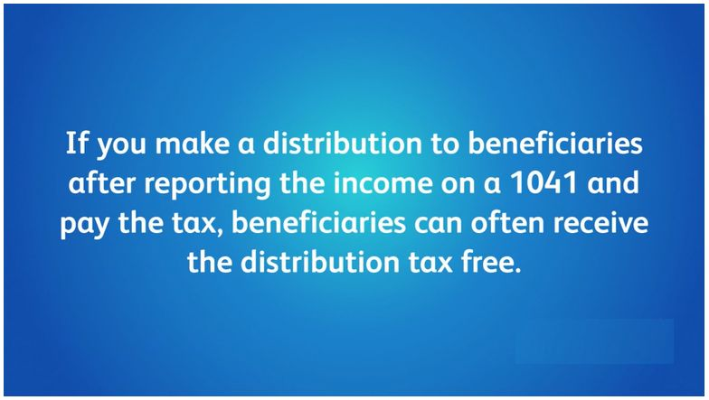 IRS Form 1040 | Form 1041 Instructions | DefenseTax
